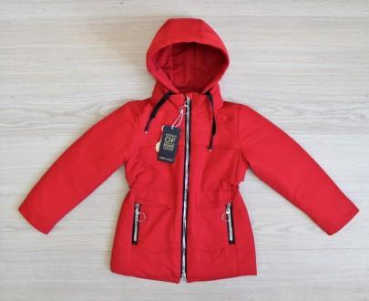 Куртка ДО-19-3
